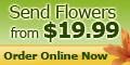 The Flower Factory USA Coupons + cashback